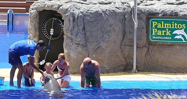 Delfiner Palmitos Park